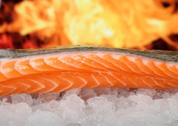 El salmón contiene Omega 3 base para una buena alimentación. Iva Marques profesora de Nutrición de Campus de Huesca