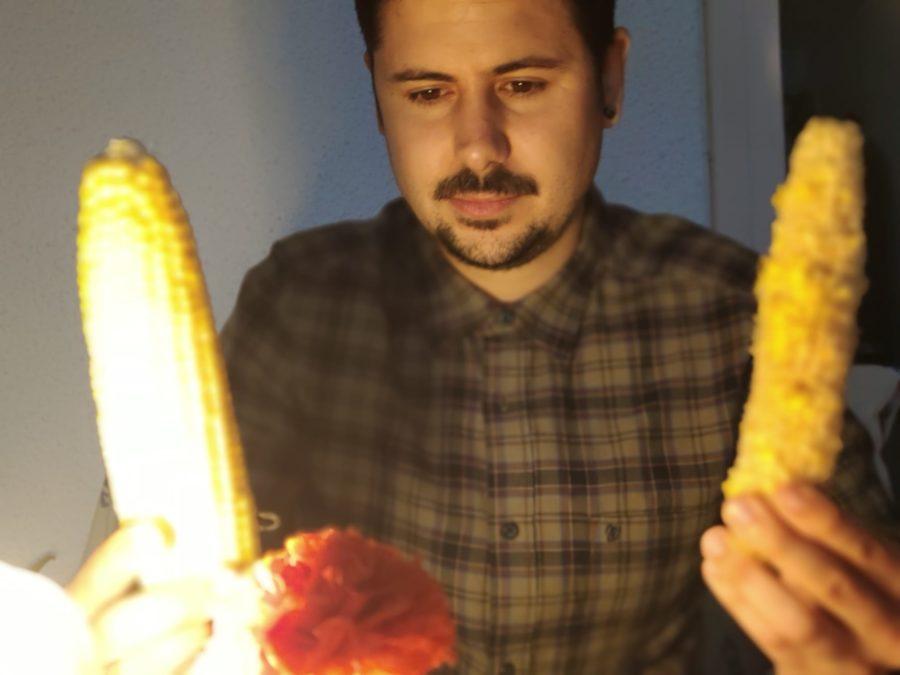 Imagen junto dos mazorcas de maíz diferentes.