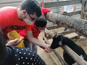Los chicos de la Asociación Down en Barbastro vistan el núcleo zoológico Iris